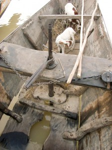 Toilet on a cargo boat, Niger River. With Goats.